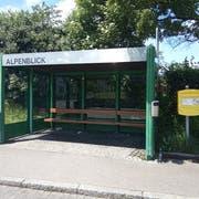 Der Kredit für die Verschiebung der Bushaltestelle Alpenblick wurde aufgehoben. Fast 300'000 Franken waren für das Projekt eingeplant. (Bild: Pascal Moser)