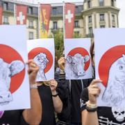 Tierschützer – hier bei einer Protestaktion in Genf – sind nicht mehr einsame Kämpfer. (Bild: Martial Trezzini, Keystone)