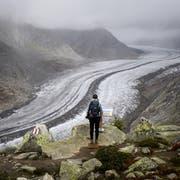 Die Schweizer Gletscher schmelzen dahin. Symbolbild. (Bild: Keystone)