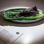 Ein Beispiel von ekligem Essen: Ein gekochter Flughund. (Bild: Bilder: Johan Nilsson/AP und Anja Barte Telin)