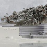 Jesuitenhof und Gardenia-Saal (vorne) bleiben bestehen, dahinter soll der Neubaukomplex zu stehen kommen. (Visualisierung: PD)
