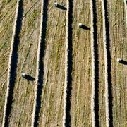 Bundesrat Johann Schneider-Ammann äussert sich an einer Medienkonferenz zur Agrarpolitik ab 2022. (Bild: Peter Schneider / Keystone)