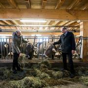 Markus Ritter (rechts), CVP-Nationalrat und Präsident des Schweizer Bauernverbandes (SBV), in seinem Element. Auf den angeblichen Durchbruch zu einem Freihandelsabkommen mit den USA reagierte er am Freitag zurückhaltend. (Bild: KEYSTONE/ALEXANDRA WEY)