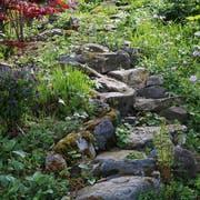 Wildnisecke in einem Naturgarten. (Bild Stefan Herfort)