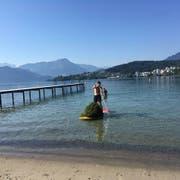 Im Vierwaldstättersee beim Strandbad Lido gedeiht aufgrund der Hitze das Seegras prächtig. Das Gras muss regelmässig geschnitten werden. (Bild:pd)