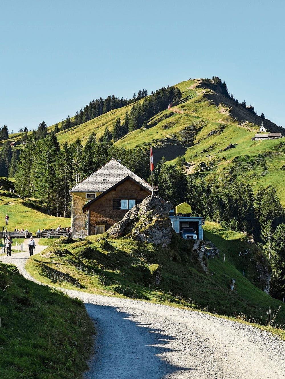 Wandertipp: Schnurstracks auf den Kronberg | St.Galler Tagblatt