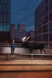 Raphael Jost posiert mit Elch für «Moosedays». (Bild: Andrin Winteler)