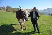 Tierbetreuer Martin Fässler mit seinem Lieblingsochsen Peter. Das neun Jahre alte Tier bringt rund 1200 Kilo auf die Waage. (Bild: Karin Erni)