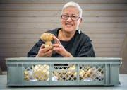 Bestandesaufnahme: Pilzkontrolleurin Monika Weber mit einer Schleiereule, einem Speisepilz, in Müllheim. (Bild: Reto Martin 12. Oktober 2017)