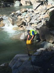 Im Kanton Uri wurden am vergangenen Samstag Fliessgewässer mit Fischen bestückt. (Archivbild: PD)