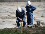 Messungen haben ergeben, dass die Mehrheit der untersuchten öffentlichen Flächen zwischen Niedergesteln und Gamsen nicht sanierungsbedürftig sind. (Bild: Keystone/JEAN-CHRISTOPHE BOTT)