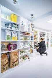 «Vegantasia» setzt vor allem auf vegane Convenience-Produkte. Sogar pflanzliches Hundefutter ist erhältlich. (Bild: Urs Bucher)