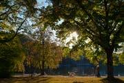 Der Herbst zeigt sich dieses Jahr von seiner sonnigen Seite. (Symbolbild: Melanie Duchene/Keystone)