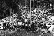 Stolz posieren Flösser 1919 im Palankatobel vor einem riesigen Haufen «Trämel». Die Baumstämme wurden vor dem Flössen in 1 Meter lange Stücke zersägt und in den Bach gestossen. Die langen Stangen dienten dem «Leiten» des Holzes im Wasser. Beim Bildstöckli zogen die Flösser das Holz mit «Zappyyen» aus dem Wasser. (Bild: PD)