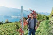 Marco Casanova auf seinem Weinberg der Casanova WeinPur AG in Walenstadt. (Bild: Thomas Henry)
