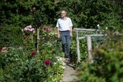 CVP-Ständerat Peter Hegglin (hier in seinem Garten in Edlibach) bringt sich für den Bundesratssitz ins Spiel.Bild: Ennio Leanza/Keystone (24. Juni 2015)