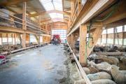 Blick in den Stall in Herrenhof am Dienstagnachmittag. (Bild: Andrea Stalder)