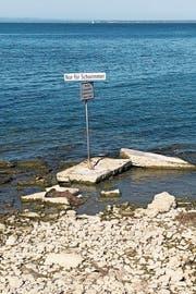 Wegen des tiefen Seepegels ragt das «Nur-für-Schwimmer-Schild» bei der Badi Hörnlibuck komplett aus dem Wasser. (Bild: Andreas Walker)