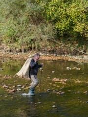 54 Männer und Frauen suchten das Thur-Flussbett nach Müll ab. (Bild: Sascha Erni)