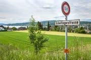 Steckborn TG - Die Scheitingerwiese in Steckborn soll sieben Wohnblöcken weichen. (Bild: Reto Martin)