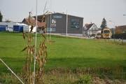 Am westlichen Dorfeingang von Sulgen wird sich die Girmatic AG ansiedeln; eine neue Strasse soll das Grundstück erschliessen. (Bild: Monika Wick)