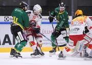 Die Thurgauer Josh Primeau und Fabio Hollenstein gegen Samuele Pozzorini (Zweiter von links) und Anthony Nigro. (Bild: Mario Gaccioli)