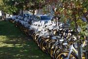 Zu Dutzenden sind die O-Bikes hinter dem Restaurant Bahnhöfli an der Säntisstrasse in Wil aufgereiht. (Bild: Gianni Amstutz)