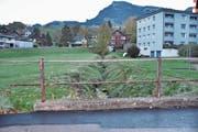Der Stocknerbach wird zwischen der Kantonsstrasse und der Laaderstrasse renaturiert. (Bild: Sabine Schmid)