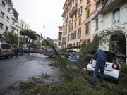 Der Sturm fällte auch Bäume, wie hier eine Pinie in Rom. (Bild: KEYSTONE/EPA ANSA/ANGELO CARCONI)