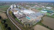 Mit dem neuen Werk in Đurđevac bietet die Bauwerk Boen Group Arbeitsplätze in der Region an und produziert unter nachhaltigen Aspekten Parkettdielen, vor allem für den europäischen Markt. (Bild: PD)