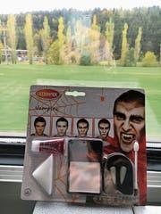 Passend zu Halloween: Vampire, Spinnen und Kunstblut im Zug. Wie ein Zombie fühlt sich manch ein Pendler aber das ganze Jahr über. (Bild: Susanne Holz (Bahnstrecke Zug-Luzern, 30. Oktober 2018))