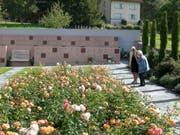 Der neu gestaltete Triesener Friedhof mit Kolumbarien und Gemeinschaftgrab. (Bild: Tushar Desai)