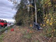 Ein Baum bremste schliesslich das Militärfahrzeug. Vier Personen wurden verletzt. (Bild: Kapo Solothurn)