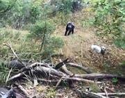Die Wandersfrau und ihr Hund kraxeln den Hang hinauf. Bild: Videostill