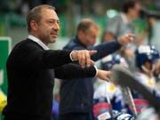 Klotens Trainer André Rötheli erlebte nach zwei Siegen einen Rückschlag (Bild: KEYSTONE/MELANIE DUCHENE)