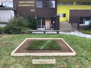 Das 1,5 Quadratmeter grosse Stück des abgetragenen FCL-Rasens ist im KKL Beromünster beim Landessender ausgestellt. (Bild: PD)