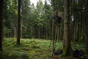 Geduldsprobe: «Ansitzen »mit dem Krienser Jäger Peter Küenzi (60) auf der Gibelegg.