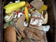 Kampf gegen Food Waste: Das grösste Potenzial liegt laut der Studie bei Tellerresten, Beilagen, Brot und Backwaren. (Bild: Keystone/DPA-Zentralbild/Z1032/_ARNO BURGI)