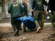 Behörden bergen die Überreste eines Brandopfers in der nordkalifornischen Stadt Paradise. (Bild: KEYSTONE/FR34727 AP/NOAH BERGER)