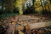Vom Start führt eine lange Treppe mit Holzstufen in die Höhe. (Bild: Stefan Kaiser (Oberwil, 7. November 2018))