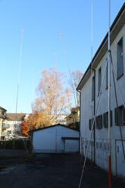 Im Hintergrund sind die Bäume zu sehen, die der Einsprecher schützen will. (Bild: jor)
