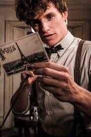 Eddie Redmayne als Newt Scamander. (Bild: PD)