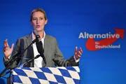 Wegen der Spendenaffäre unter Druck: die AfD-Fraktionschefin Alice Weidel . (Photo by Sebastian Widmann/Getty Images)