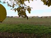 Im Gebiet Döbeli soll ein neuer Kunstrasenplatz gebaut werden. (Bild: Martina Eggenberger)