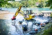 Das kalte Wasser vom Geisslibach wird im vergangenen Sommer in Diessenhofen mit einem Bagger rückgestaut, weil es den Äschen im Rhein lebensbedrohlich warm wird. (Bild: Andrea Stalder, 24. Juli)