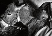 Fortuna, eindrücklich gespielt von der Äthiopierin Kidist Siyum («Lamb»), findet beim Esel Glöckchen Liebe und Zuneigung. (Bild: Vega Film)