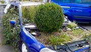 Künstlerischer Ausdruck oder politische Botschaft? Fest steht: Dieses Auto fährt nicht mehr. (Leserbild: Heinz Schürmann (Sachseln, 6. Oktober 2018))