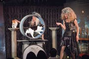 Die beiden Büsis wurden eigens für das Tingel-Tangel im Walter-Zoo dressiert. (Bild: Urs Bucher)