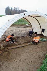 Vorsichtige Arbeit: In Sins haben Archäologen wertvolle Funde gemacht, die zurück bis zur Bronzezeit reichen. (Bild: Eddy Schambron)