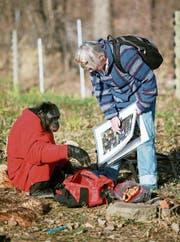 Haben den Plausch beim Picknick: Bonobo Kanzi und Forscherin Susan Savage-Rumbaugh. (Bild: Getty)